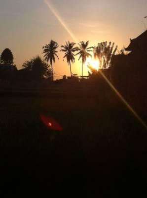 Energise in Bali!