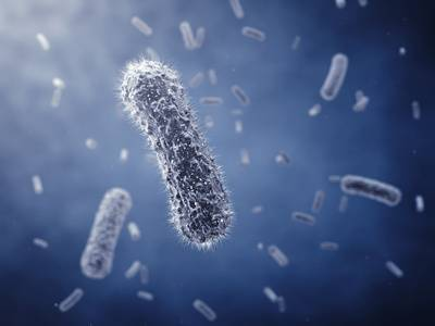 b2ap3_thumbnail_bacteria-probio.JPG