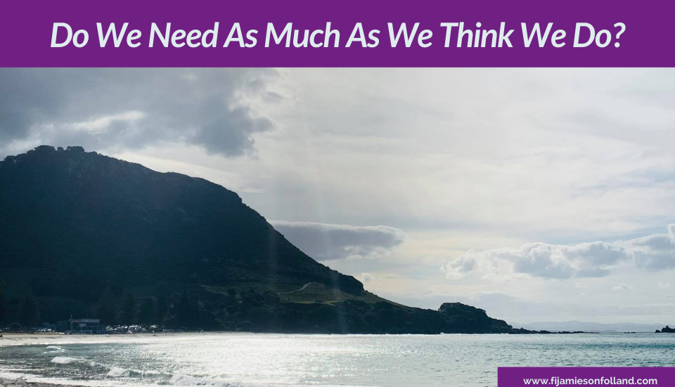 Do We Need As Much As We Think We Do?