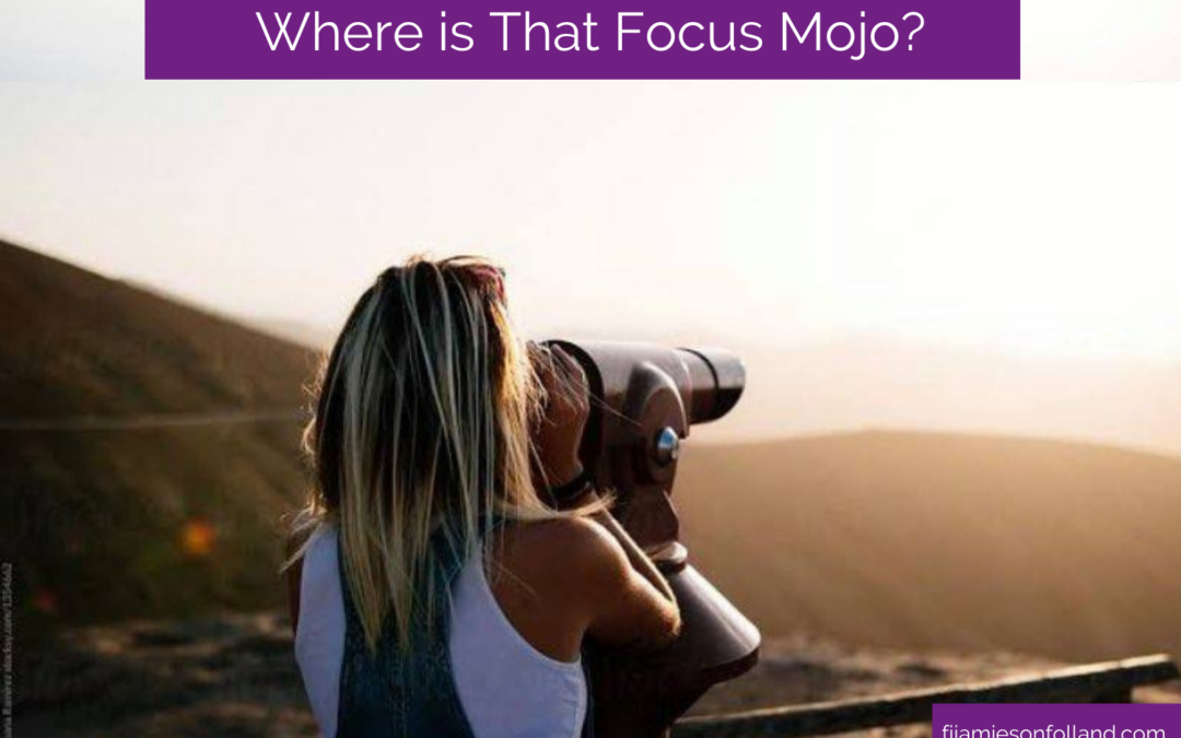 Where is That Focus Mojo?