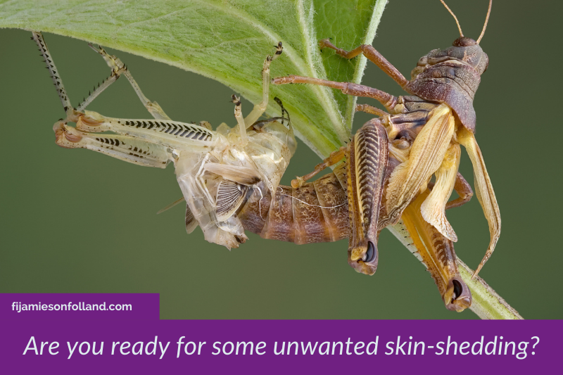 Are-you-ready-for-some-unwanted-skin-shedding